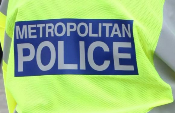 Man, 27, stabbed in the leg and left bleeding in the street in Central London was also robbed of his mobile phone, police confirm