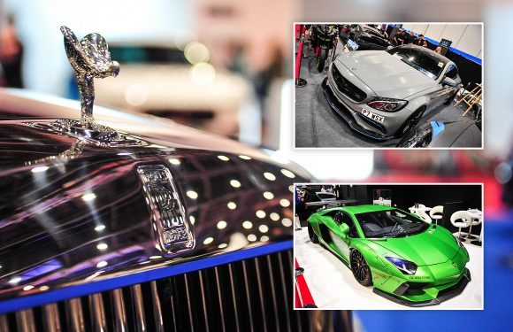 IN PICTURES: The London Motor Show 2018