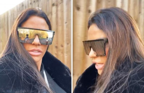 Katie Price says 'oh well' after driving ban is REDUCED to just 18 months following latest incident